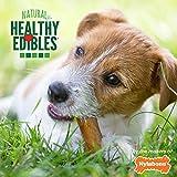 Nylabone Healthy Edibles All-Natural Long Lasting