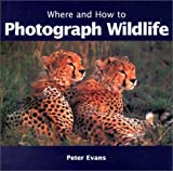 Where and How to Photograph Wildlife
