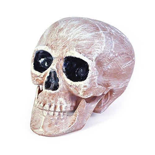 Bristol Novelty HI266 Skull Head, Pink/White, One Size