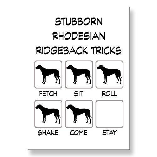 Rhodesian Ridgeback Stubborn Tricks Fridge Magnet Funny