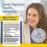 #1 BEST Probiotic Supplement - 900 BILLION CFU