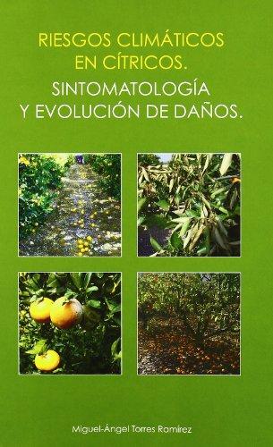Descargar Libro Riesgos Climáticos En Cítricos: Sintomatología Y Evolución De Daños Miguel-Ángel Torres RamÍrez
