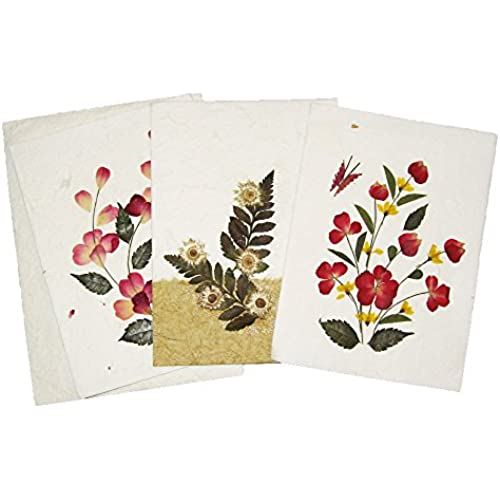 Handmade Pressed Flower Greeting Card Designs - Make Great Birthday, Anniversary and Wedding Gift Card ideas - Assorted Pack of 3 Cards Sales