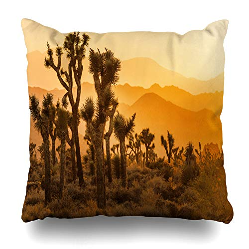 Ahawoso Throw Pillow Covers Nature Sun Sets Over Joshua Tree California Parks Mountains Sunset Trees United States Design Home Decor Zippered Pillowcase Square Size 18 x 18 Inches Cushion Case