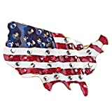 ACCESSORIESFOREVER Patriotic Jewelry Crystal Rhinestone American Flag Charm Brooch Pin BH84 Gold