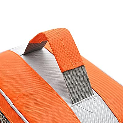 Insulated Lunch Bag Cooler Bag,Large Size Waterproof Outdoor Picnic Bag,Lunch Tote Bag for Women Men, with Zip Closure for travel, Orange