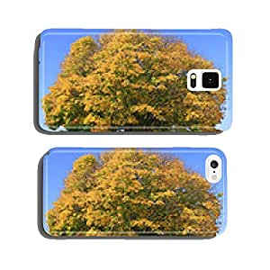 autumn tree cell phone cover case iPhone6 Plus