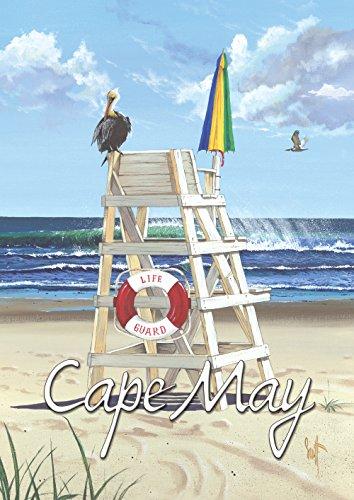 (Toland Home Garden Pelican Post Cape May 28 x 40 Inch Decorative Regional New Jersey Beach Bird Ocean House Flag)