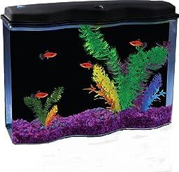 API AquaWave Aquarium Kit with LED Lighting and Internal Filter, 2-1/2-Gallon
