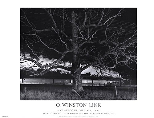 Max Meadows, Virginia, 1957 / NW 1643 Train No. 17 The Birmingham Special Passes a Giant Oak by O. Winston Link Art Print, 32 x 24 inches