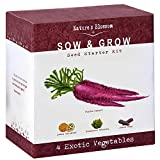 Nature's Blossom Exotic Vegetables Growing Kit - 4 Unique Plants to Grow From Seed. Beginner Gardeners Starter Set To Start Your Own Home Veg Garden. Fun First Gardening Project for Kids and Adults