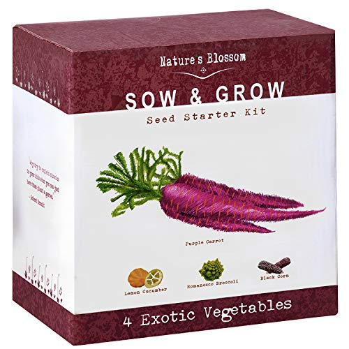 (Nature's Blossom Exotic Vegetables Growing Kit - 4 Unique Plants to Grow From Seed. Beginner Gardeners Starter Set To Start Your Own Home Veg Garden. Fun First Gardening Project for Kids and Adults )