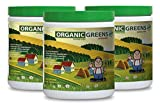 Super green food powder organic - GREEN SUPERFOOD BLEND 300G WITH NATURAL BERRY FLAVOR - digestive issues support (3 Bottles)