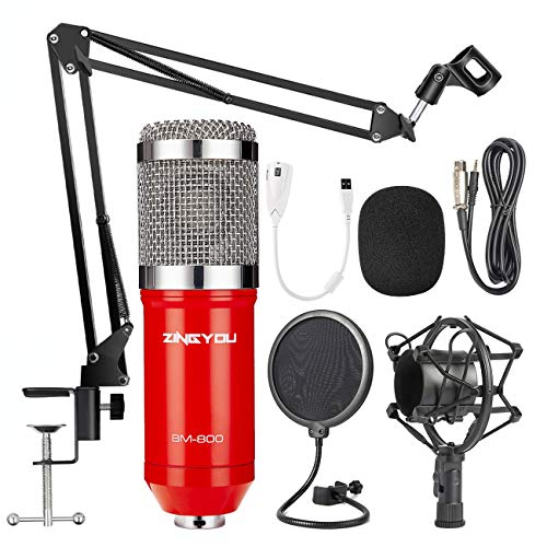 ZINGYOU Condenser Microphone Bundle, BM-800 PC Microphone Professional Cardioid Studio Mic Set with Mic Suspension Scissor Arm, Shock Mount and Pop Filter for Studio Recording & Broadcasting (Aurora R (Pop Sets Piano)