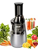 single auger style juicers - Masticating Juicer with Low Speed Technology for Retaining Nurtients, Masticating Juicer,250Watt Quietly Motor, 50RPMs,Slow Masticating Juice Evenly and Gently From Fruits,Vegetables and Nuts