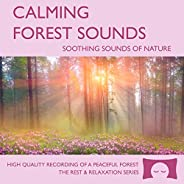 Calming Forest Sounds - Nature Sounds Recording - For Meditation, Relaxation and Creating a Soothing Atmospher