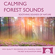 Calming Forest Sounds - Nature Sounds Recording - For Meditation, Relaxation and Creating a Soothing Atmosphere - Nature's Perfect White Noise -