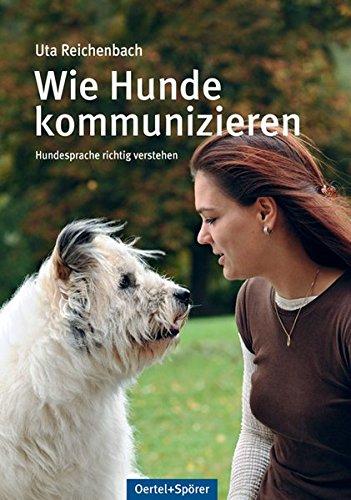 Wie Hunde kommunizieren: Hundesprache richtig verstehen