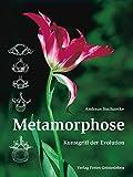 Metamorphose: Kunstgriff der Evolution