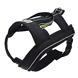 FrontPet Explorer Dog Pulling Harness with Included Dog Pulling Leash, Dog Harness