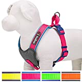"Blueberry Pet 4 Colors Soft & Comfy Summer Hope 3M Reflective Padded Dog Harness Vest, Chest Girth 15.5-17.5"", Neck 16.5"", Fluorescent Pink"