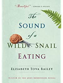 com nature writing essays books the sound of a wild snail eating