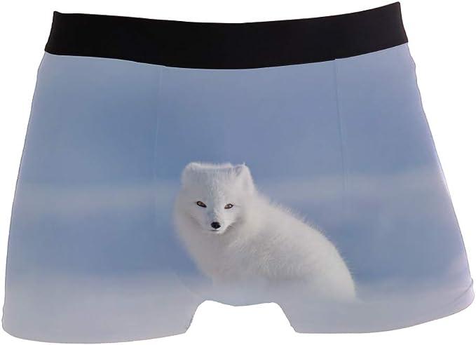 Bear Fox Comfortable Mens Boxer Briefs Multi-Size Soft Underwear S