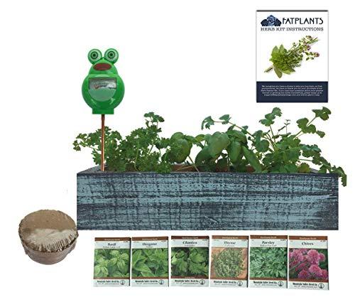 FATPLANTS Herb Garden Cedar Planter Kit - Decorative, Indoor Germination Tray with Soil, Seeds and Moisture Meter
