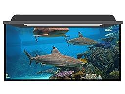 Deep Blue Themes Shark Group Aquarium Background (10-20 Gallons (24Wx20H))