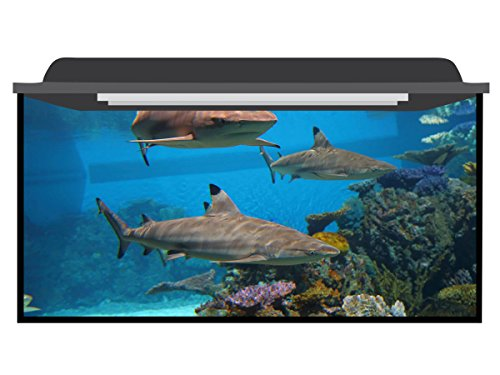 Deep Blue Themes Shark Group Aquarium Background (>210 Gallons (100Wx40H)) by Deep Blue Themes