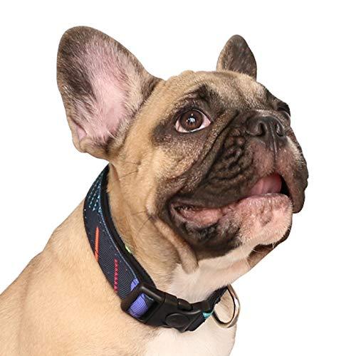 iChoue Pet Dog Soft Comfy Collar Neoprene Padded Adjustable Pretty Pattern Design Nylon Collars Wide 3/4