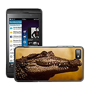 Hot Style Cell Phone PC Hard Case Cover // M00110003 Swamp Snout Cold Threatened River // BlackBerry Z10