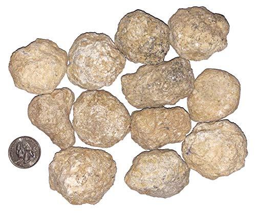 Kit Geodes (goldnuggetminer 12 Bulk Break Your Own Geodes - Discover Crystals Inside!)