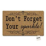 SGBASED Door Mat Welcome Mat Don't Forget Your Sparkle Mat Washable Floor Entrance Outdoor & Indoor Decor Rug Doormat Non-Woven Fabric (30 X 18 inches)