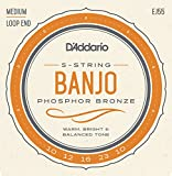D\'Addario EJ55 Phosphor Bronze 5-String Banjo Strings, Medium, 10-23