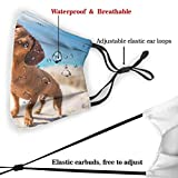 Dachshund Dog Washable Reusable Dust Filter and