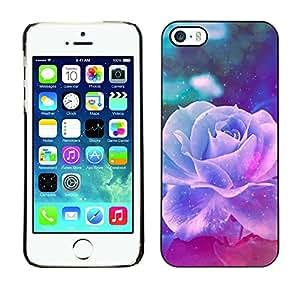 Paccase / SLIM PC / Aliminium Casa Carcasa Funda Case Cover para - Violet Rose Vintage Vignette Flower - Apple Iphone 5 / 5S
