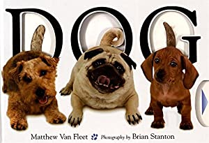 From the #1 New York Times bestselling children's book creator Matthew Van Fleet.Doggone fun for little ones! In Matthew Van Fleet's captivating multiconcept book, twenty breeds of capering canines demonstrate action words, opposites, synonyms, and m...