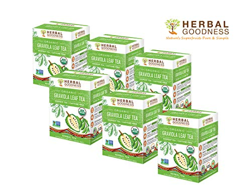 Graviola Leaf Tea - Soursop Dried Leaves - USDA Certified Organic - Cell Regeneration & Stress Relief - Traditional Loose Tea - Decaf - 24 Tea Bags - Made in USA by Herbal Goodness - 6 BOXES