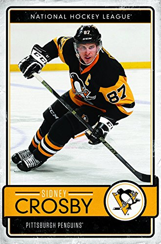 Trends International Pittsburgh Penguins - Sidney Crosby Premium Wall Poster, 22.375