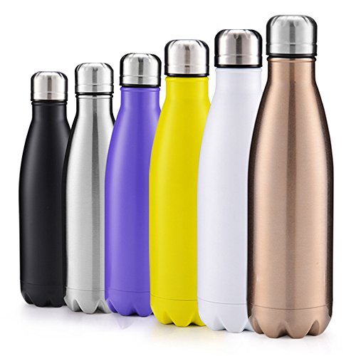 GABOSS 17oz Double Wall Vacuum Insulated Stainless Steel Water Bottle Perfect for Outdoor Sports Camping Hiking Cycling, with a Cleaning Brush for Free Gift (Purple)
