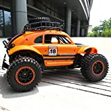KKmoon Flytec SL-145A Rock Crawler RC Buggy Car 1/14 2.4G 2WD 25KM/h Full Scale RC Off-Road Car Gift for Kids