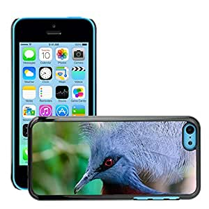 Super Stellar Slim PC Hard Case Cover Skin Armor Shell Protection // M00125562 Pigeon Crown Crowned Victoria New // Apple iPhone 5C