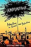 Ambivalence, Jonathan Garfinkel, 0393066746