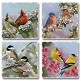 Spring Quartet Birds Highland Graphics Tumbled Tile Coasters set of 4