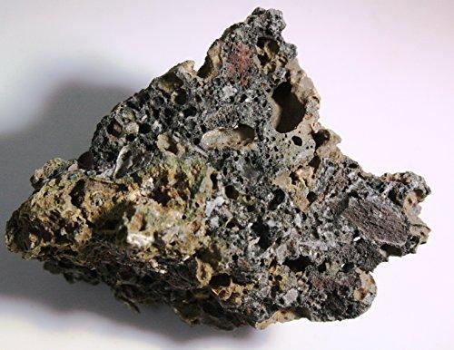 Vesicular Basalt Igneous Rock - 10 Pieces of Scoria