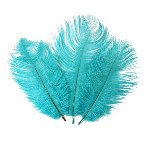 Ostrich Feather,Hgshow 20pcs Feathers 8-10inch(20-25cm) for Home Wedding Decor. -