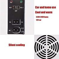 LJ-CLOOR Refrigerador para Auto Refrigerador Portátil para Autos ...
