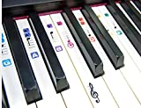 #8: TimberRain Piano Stickers for 49 / 61 / 76 / 88 Key Keyboards, Removable and Double Layer Coating Color Keyboard Stickers for Kids and Beginners
