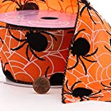 """Spiders & Webs Halloween Wired Ribbon - 2 1/2"""" x 10"""